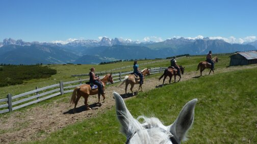 Abenteuer - Pferdetrekking